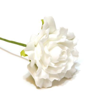 Розы пенка