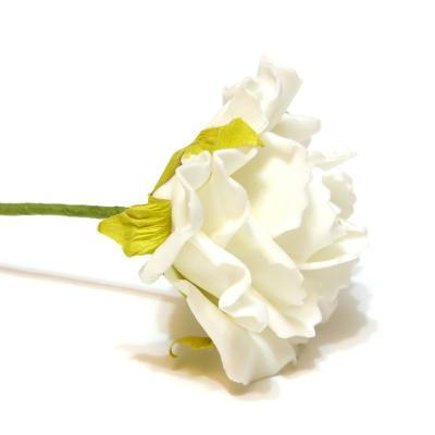 Розы кремовые недорого