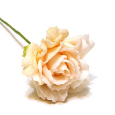 Персиковый цвет розы