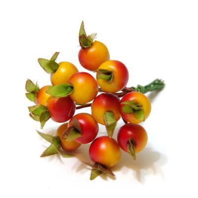 Ягодки миниатюрные красно-желтые