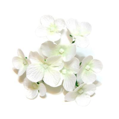 Гортензия белая 9 цветочков