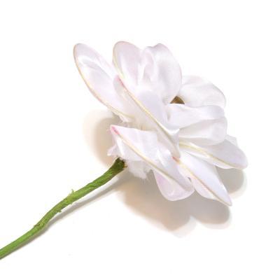 Цветы для композиций