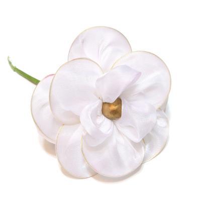 Головка цветка белая