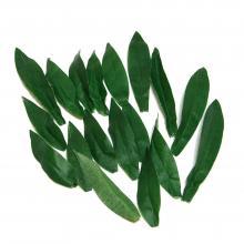 Набор искусственных листьев