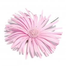 Розовая хризантема из ткани