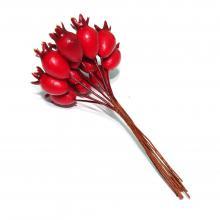 Красные ягодки шиповника