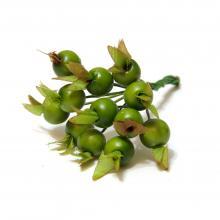 Ягодки миниатюрные зеленые