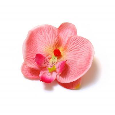 Орхидея головка маленькая розовая