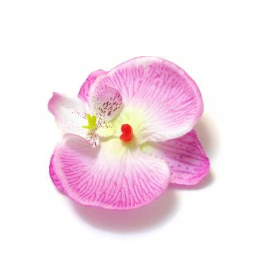 Маленькие головки орхидей