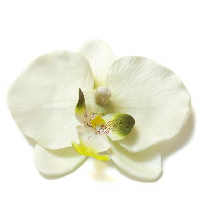 Головка орхидеи большая белая для свадьбы