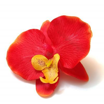 Красная орхидея из ткани