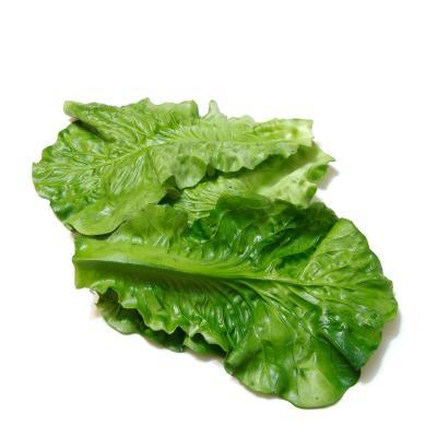 Листья салата искусственные