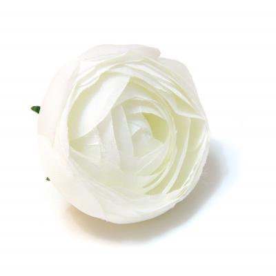 Головки цветов белые недорого