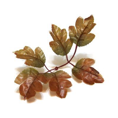 Листья двойные коричневые