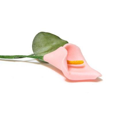 Кала маленькая розовая