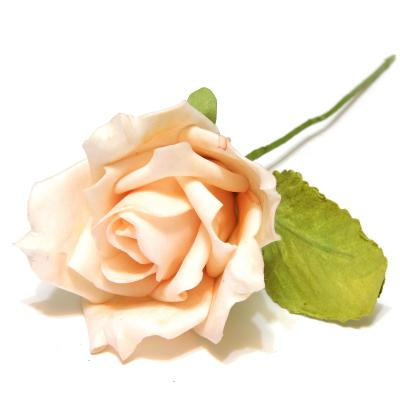 Розы персиковые