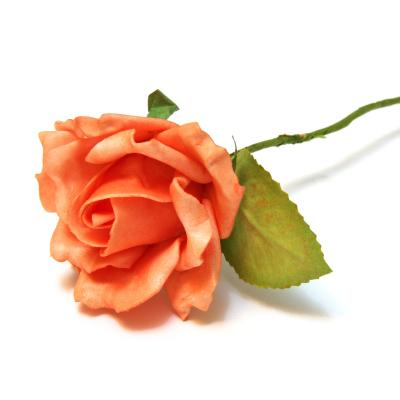Оранжевая роза латекс