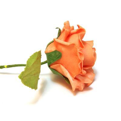 Оранжевые розы из латекса