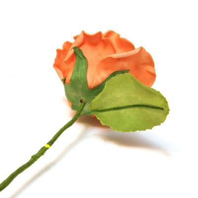 Роза латекс нежная