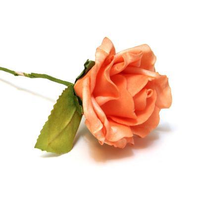 Роза латекс оранжевая