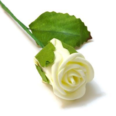 Бутон кремовой розы пенка