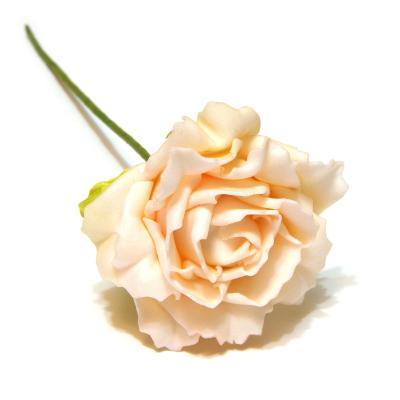 Розы латекс