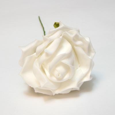 Роза белая пенка