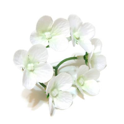 Белая гортензия