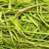 Рафия зеленый цитрус